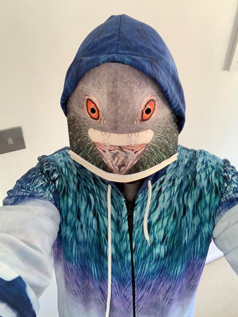 Amongst The Pigeons - Hoodie